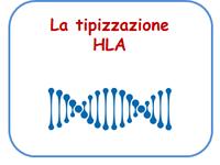 La tipizzazione HLA